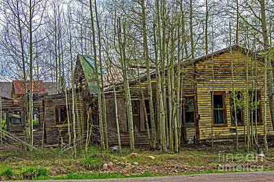 Photograph - Abanoned Homes by Stephen Whalen