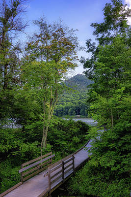 Photograph - Abbott Lake Trail by Steve Hurt