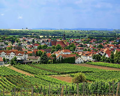 Photograph - Abenheim Vineyards by Anthony Dezenzio