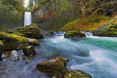 Abiqua Falls In Spring Art Print by David Gn