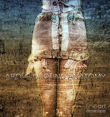 Vintage Erotica Photograph - Above Ground Anatomy  by Steven Digman