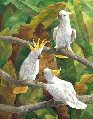 Cockatoo Painting - Above It All by Laurie Hein