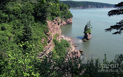 Photograph - Above The Bay Of Fundy by Art Cole