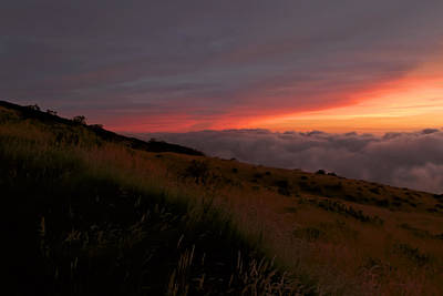 Photograph - Above The Clouds by Susan Rissi Tregoning