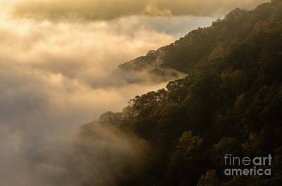 Photograph - Above The Mist - D009960 by Daniel Dempster