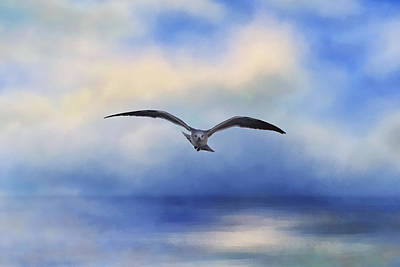 Of Birds Photograph - Above The Sea by Kim Hojnacki