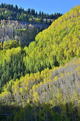 Photograph - Above The Silverton To Durango Highway by Ray Mathis
