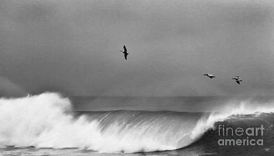 Painting - Above The Surf Bw by David Millenheft