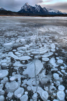 Photograph - Abraham Lake Ice Bubbles by Adam Jewell
