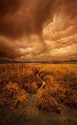 Unity Photograph - Absence Of Season by Phil Koch