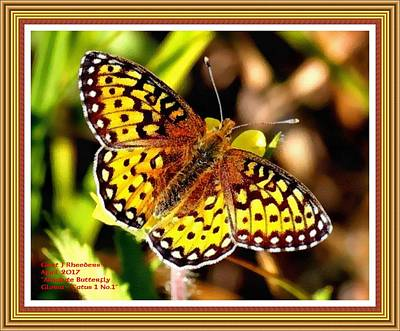 Park Scene Digital Art - Absolute Butterfly Gloria Catus 1 No. 1 L B With Alt. Decorative Ornate Printed Frame. by Gert J Rheeders