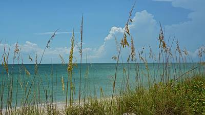 Photograph - Absolutely Glorious Beach Day by Carol Bradley