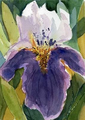 Absract Iris Art Print