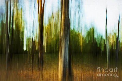 Impressionist Photograph - Abstract 1 by Scott Pellegrin