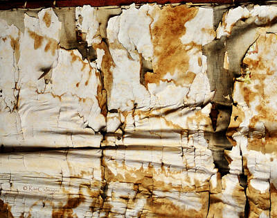 Art Print featuring the photograph Abstract 1317 Old Wallpaper As Landscape by Kae Cheatham