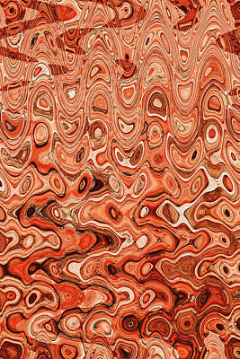 Digital Art - Abstract 5934et by Tom Janca