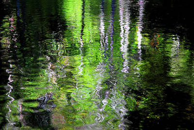 Photograph - Abstract Along The Stream by Mike Eingle