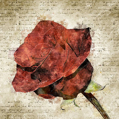 Digital Art - Abstract And Modern Vintage Rose by Michael Kuelbel