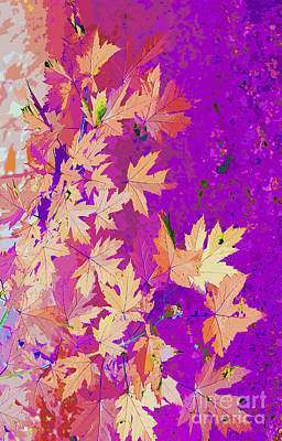 Photograph - Abstract Autumn Nature by Nina Silver