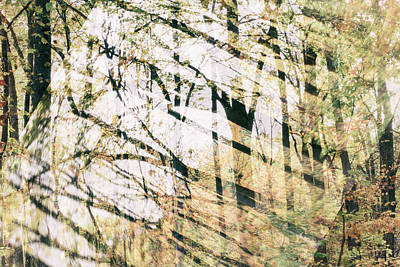 Abstract Autumn Woods Art Print by Mother Nature