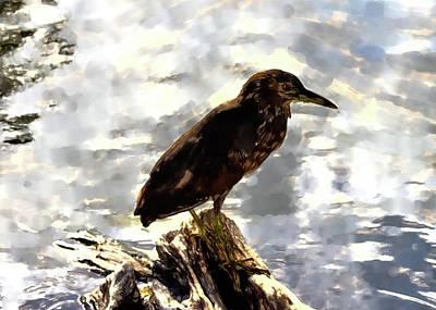 Photograph - Abstract Bird 15 by Kristalin Davis