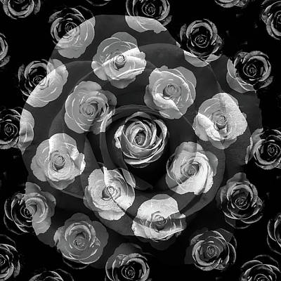 Photograph - Abstract Black And White Rose by Aimee L Maher ALM GALLERY