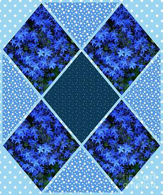 Photograph - Abstract Blue Star Flowers by Joan-Violet Stretch
