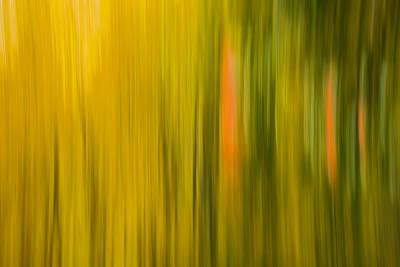 Abstract Blur Number 1 Art Print by Steve Gadomski