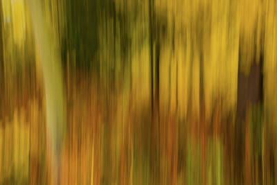 Abstract Blur Number 3 Art Print by Steve Gadomski