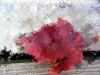 Abstract Bright Red Leaf Art Print by Terry Davis