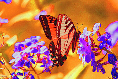 Digital Art - Abstract Butterfly by David Stasiak