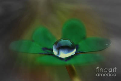 Abstract Clover Art Print by Kym Clarke