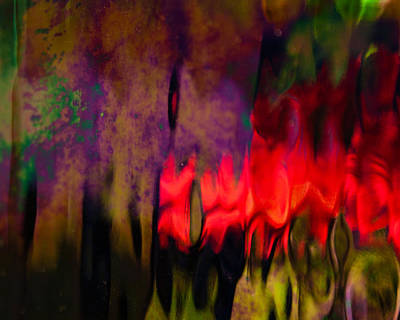 Photograph - Abstract Color by Erin Kohlenberg