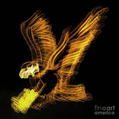 Abstract Digital Photograph - Abstract Eagle by Skip Willits
