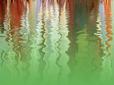 Photograph - Abstract Eucalyptus Tree Bark Reflections by Gill Billington