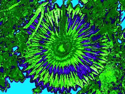 Party Digital Art - Abstract Fan Wheel by Will Borden
