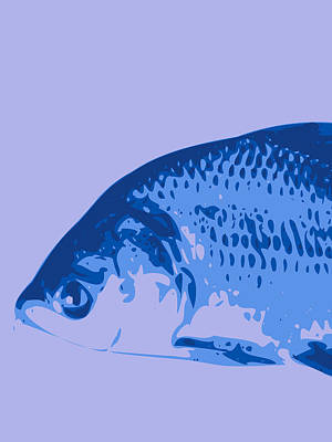 Digital Art - Abstract Fish Contours Blue by Keshava Shukla