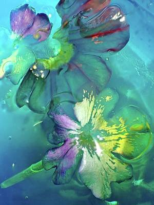 Photograph - Abstract Flower 2 by Lorella Schoales