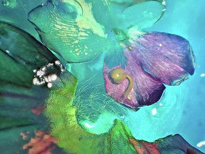 Photograph - Abstract Flower 3 by Lorella Schoales