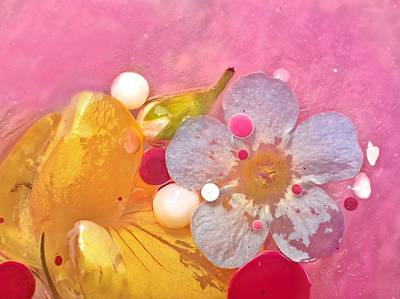 Photograph - Abstract Flower 4 by Lorella Schoales