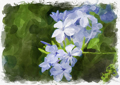 Photograph - Abstract Flower Watercolor II by Ricky Barnard