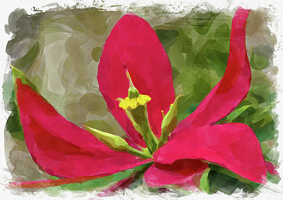 Photograph - Abstract Flower Watercolor IIi by Ricky Barnard