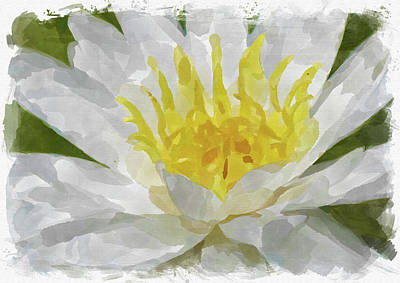 Photograph - Abstract Flower Watercolor Ix by Ricky Barnard