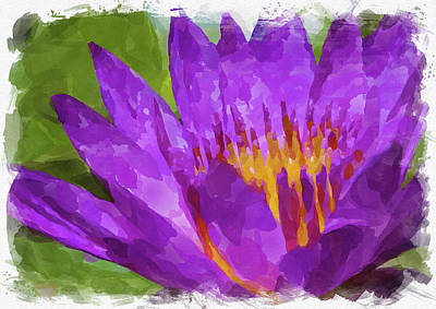Royalty-Free and Rights-Managed Images - Abstract Flower Watercolor X by Ricky Barnard