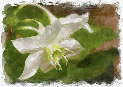 Photograph - Abstract Flower Watercolor Xx by Ricky Barnard