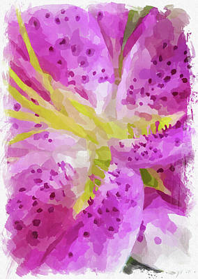 Royalty-Free and Rights-Managed Images - Abstract Flower Watercolor XXIV by Ricky Barnard
