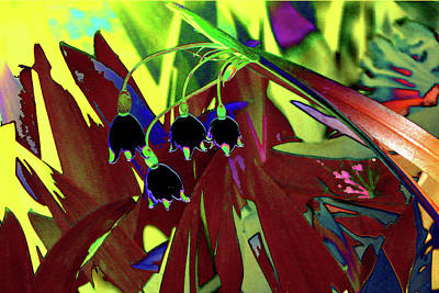 Abstract Flowers Of Light Series #10 Art Print