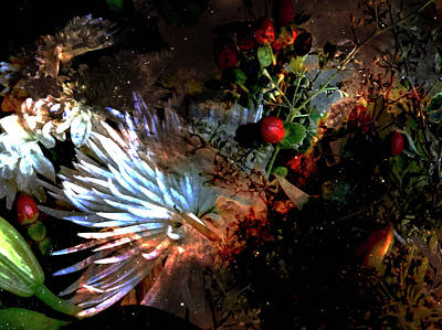 Abstract Flowers Of Light Series #5 Art Print