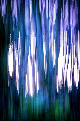 Photograph - Abstract Forest 2 by Spikey Mouse Photography