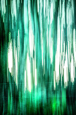 Photograph - Abstract Forest 3 by Spikey Mouse Photography